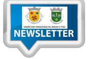 Newsletter |UFAP 01/2021