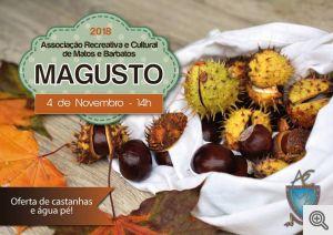 b_300_0_16777215_01_images_artigos_2018_10_magusto_matos.jpg