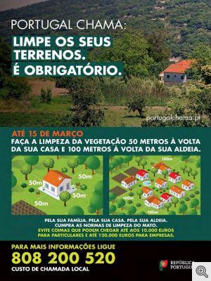 b_300_0_16777215_01_images_artigos_2019_03_portugal_chama.jpg