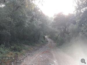 ruacovamoinho 5