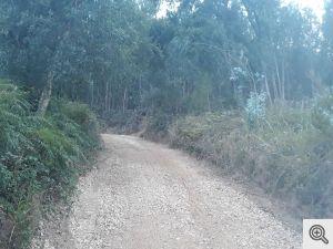 ruadoribeiro agagos 1