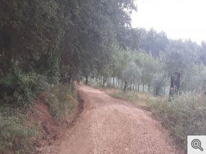 ruadoribeiro agagos 13