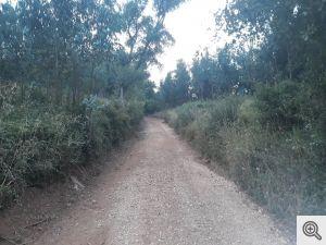 ruadoribeiro agagos 5