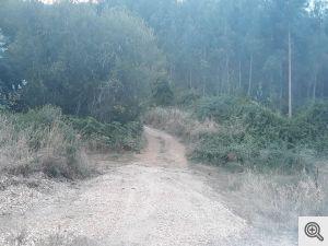ruadoribeiro agagos 9