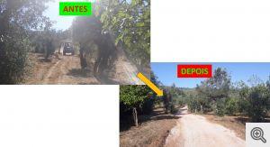 b_300_0_16777215_01_images_artigos_2020_07_travessasapolonia_1.jpg