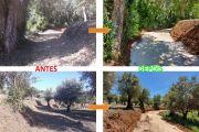 Pias, 'caminho não classificado' – Limpeza, alargamento e regularização do piso
