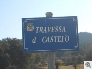 tcastelo13